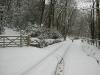 winter_2010_004_800x600