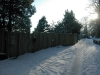 winter_2010_017_800x600
